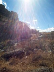 Catalina Mountains, AZ (V. Smith)