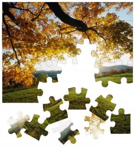 puzzle-1438810-m