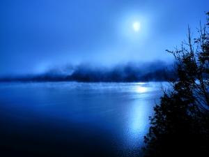 autum-fog-1402398-m