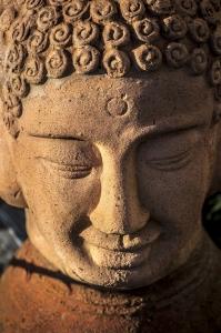 buddha-1420657-m