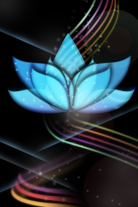shiny-lotus-1329638-m