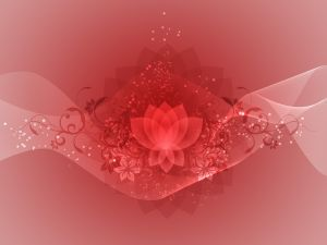 meditate-1038838-m